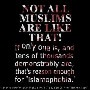 NotAllMuslimsDear